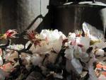 une nouvelle de saison: l'eau de fleur d'amandier!